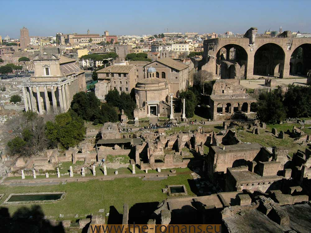 Forum from Palatino