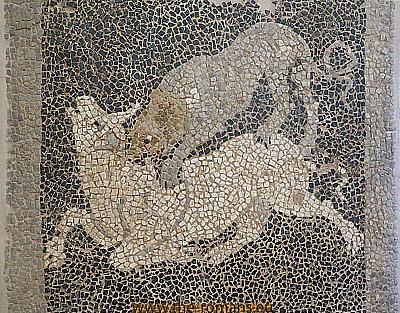 Mosaic of a lion attacking a bull